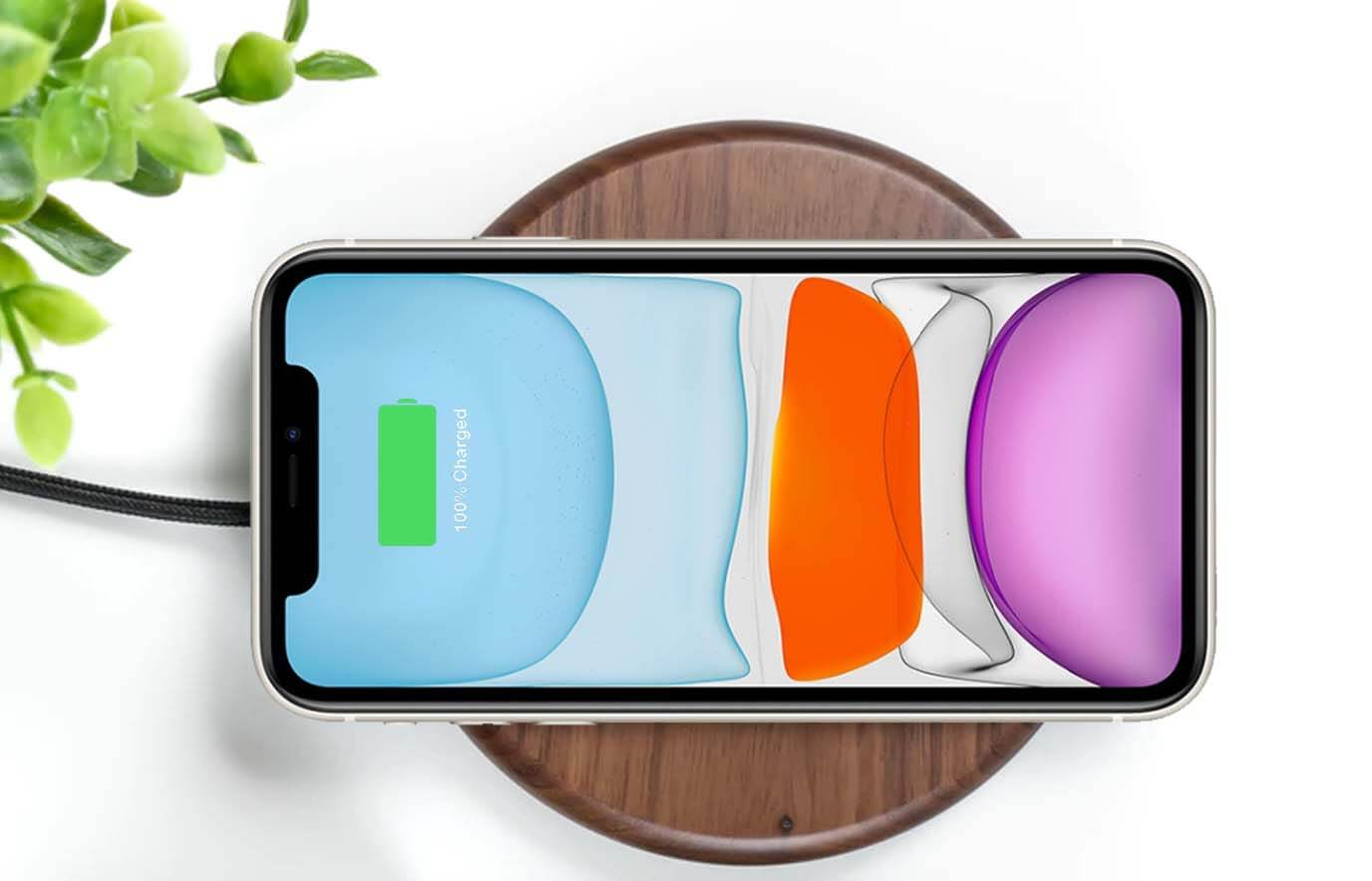 iPhone 11 draadloos opladen